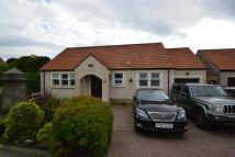 3 bedroom Detached Bungalow in Maryfield Gardens...