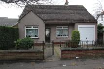 Detached Bungalow for sale in Hillview Terrace...