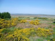 Land in Nigg, Tain, IV19 for sale