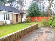 3 bed Semi-Detached Bungalow in Primrose Place...