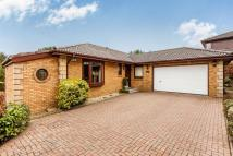 4 bed Detached house in Sarazen Green...