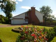 4 bed Detached house for sale in Mountainhall Avenue...