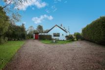 3 bedroom Detached Bungalow for sale in Clarencefield, Ruthwell...