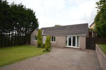 Bungalow for sale in The Orchard Common Side...