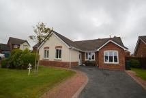 Bungalow for sale in Laurel Court, Whitehaven...