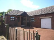 3 bedroom Detached Bungalow for sale in Whiteley Close...