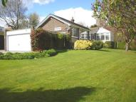 Detached Bungalow for sale in Holburn Gardens, Ryton...