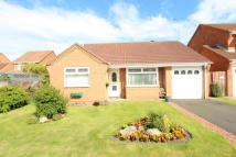 Bungalow in Dunsdale Drive...