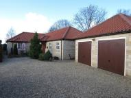 4 bedroom Detached Bungalow in Thurlby