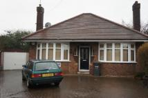 Detached Bungalow for sale in Fletton