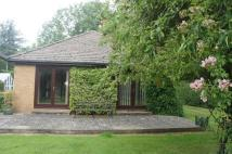 Detached Bungalow to rent in Peterborough Road...