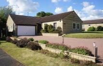 Castor Detached Bungalow for sale