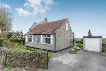 Detached Bungalow for sale in Manor Road, CHESTERFIELD...