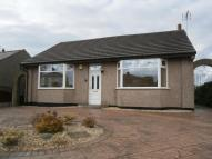 2 bed Detached Bungalow in Yew Tree Drive...