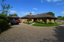 Detached Bungalow for sale in Stubbington, FAREHAM...