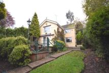 Detached house for sale in Leadendale Lane...