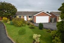 Detached Bungalow for sale in Hawksdale Close...
