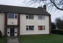 Flat in Maple Avenue, Oswestry...