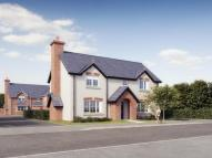 3 bed new home for sale in Elm Tree Park...