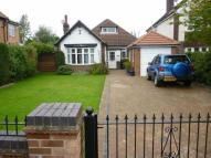 5 bedroom Detached Bungalow in Park Lane...