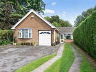 Detached Bungalow for sale in Steven Close, Toton...
