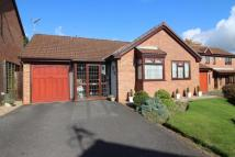 3 bed Detached Bungalow for sale in Harewood Close...