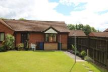 Semi-Detached Bungalow in Ladywell Close, Stretton...