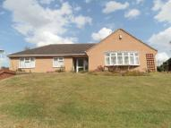 Detached Bungalow for sale in Derby Road, Hathern...