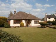 Detached Bungalow for sale in Elspeth Bennetts Road...