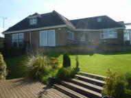 Detached Bungalow for sale in Merrylees Road, Thornton...