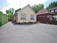 2 bed Detached Bungalow in Bridge Street, Writtle...