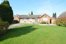 Detached Bungalow for sale in Finedon Road...