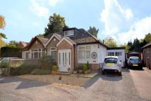 3 bedroom Bungalow in Overstone Road, Sywell...