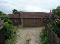 3 bed Detached Bungalow for sale in Egar Way, South Bretton...