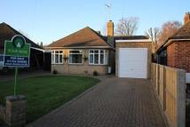 Detached Bungalow in Mary Armyne Road...