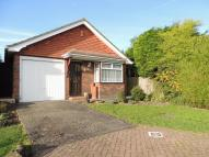 Detached Bungalow in Penshurst Close...