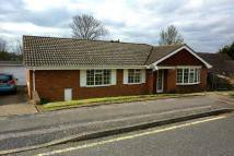 4 bed Detached Bungalow in Novar Close, Orpington...