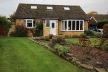4 bed Bungalow in The Beeches Church Road...