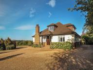 7 bedroom house in Kings View Farm Toms...
