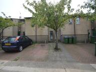 Alexander Terrace Fuchsia Street property for sale