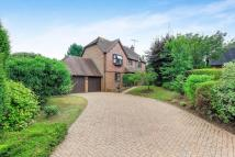 Newlyns Meadow Detached property for sale