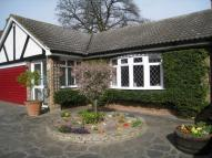Detached Bungalow in Park Avenue, Broadstairs...