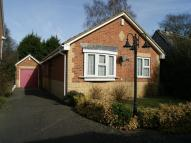 Detached Bungalow for sale in Elder Court, Wigmore...