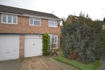 3 bed semi detached property for sale in Brewer Road...