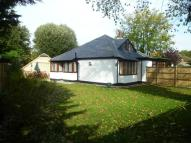 Detached Bungalow in Gossamer Lane...