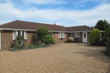 Detached Bungalow for sale in Martineau Lane, Hastings...