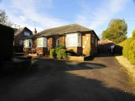 Detached Bungalow in Hilden Way, Littleton...