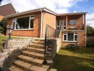 Detached Bungalow in Spring Road, Southampton...
