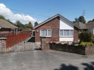 Detached Bungalow for sale in Jacobs Gutter Lane...