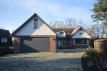 5 bedroom new property for sale in Newhaven Exmouth Road...